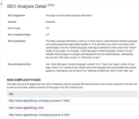 SEO Analysis Detail